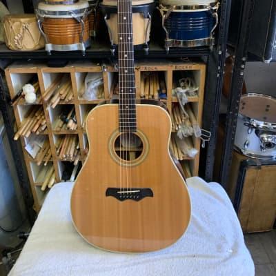 Bozo Model B60 Acoustic Guitar for sale