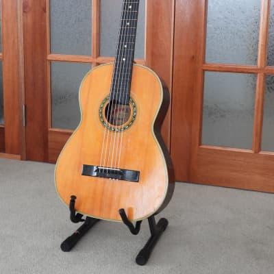 1963-1967 Ibanez Salvador 'copy of Raffaele Calace' classical guitar for sale