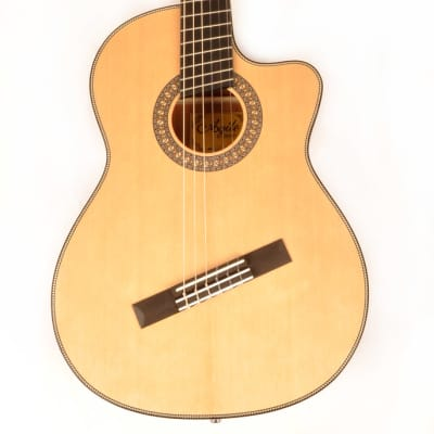 Agile Renaissance Classical 62527 EQ CUT NA 6 String Acoustic Multiscale Guitar for sale
