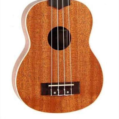Chateau CH-C08U2100 Ukulele in natural for sale