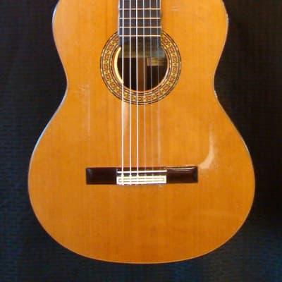 1996 Ricardo Sanchis Carpio Model 1B for sale