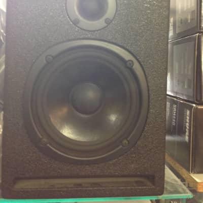Paire monitor studio Carvin SRS 2005 Noir