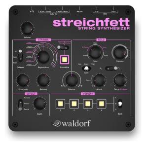 Waldorf Streichfett Synthesizer : NEW : [DETROIT MODULAR]