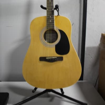 Zager Easy Play ZAD01PK N Acoustic Guitar for sale