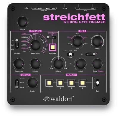 Waldorf Streichfett Desktop String Synthesizer