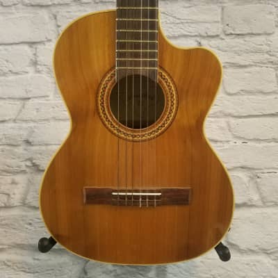 Lone Star ZAPATA Acoustic Guitar for sale