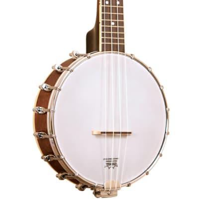 Gold Tone BUC Concert Banjo Ukulele for sale