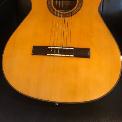 Dorado 6027 - 1970's Japanese Classical Guitar *see video* for sale