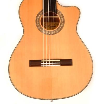 Agile Renaissance 6 String Fretless 625 Classical EQ CUT Classical Acoustic / Electric Guitar for sale