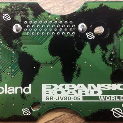 Roland SR-JV80-05 World Synthesizer Expansion Sound Board