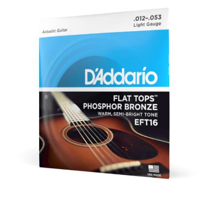 D'Addario Phosphor Bronze Flat Top Light 12-53 EFT16