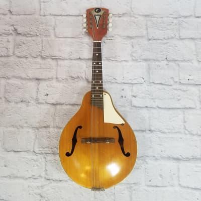 Vintage Kay 8 String Mandolin w/ Bag for sale
