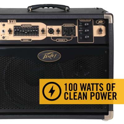 "Peavey E110 Ecoustic 1x10"" 100W Acoustic Guitar Combo Amp w/ Effects"