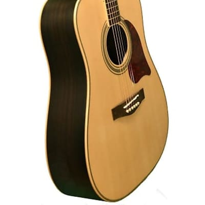 Revival  RG-24M Matte Solid Spruce Top Rosewood Dreadnought Nato Neck 6-String Acoustic Guitar for sale