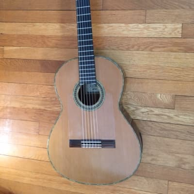 Aaron Greene Concert Classical for sale