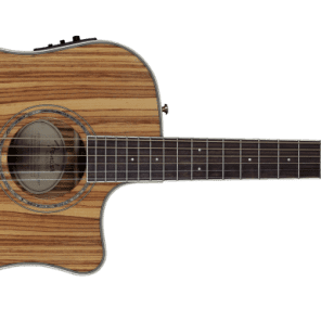 Fender CD220SCE  All Zebrano Acoustic Electric 0961504021 for sale