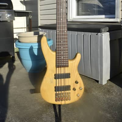 Agile Brice 6 string bass Vintage toned