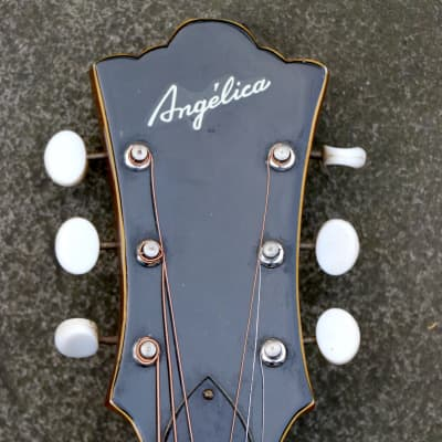 Rare + Superb Example MIJ Angelica Oversize Dreadnought c.1960 Natural for sale