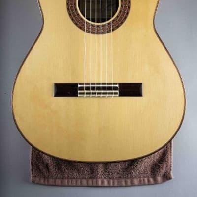 Francisco Navarro Classical Guitar