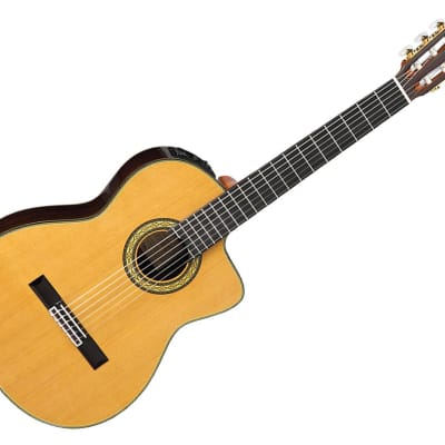 Takamine Guitars TH5C with Hirade Classical with Cutaway Acoustic Guitar - Solid Rosewood/Ebony - TH for sale