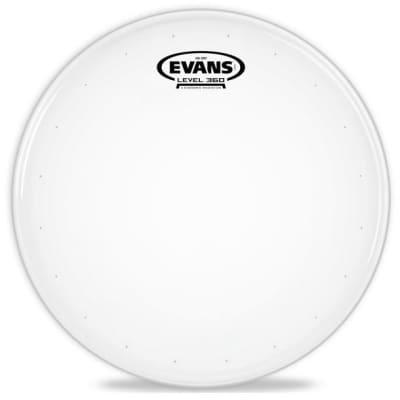"Evans B14HDD-B Genera HD Dry Bulk Drum Head - 14"""