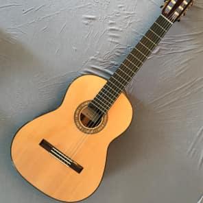 Kolya Panhuyzen Left Handed, 7-string, raised fretboard Classical Guitar 2011 for sale