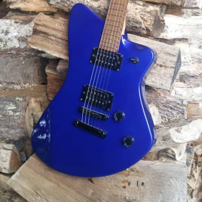 Fernandes Vertigo Colblat  Blue for sale