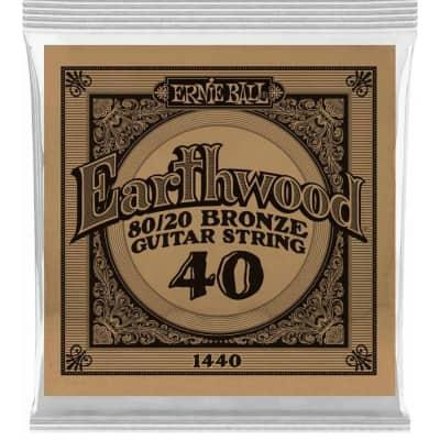 Ernie Ball P01440 .040 Earthwood 80/20 Bronze Acoustic Guitar String