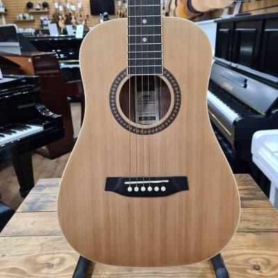 Ashton SP Joeycoustic NTM Acoustic Guitar Natural | SP18144 | Sherwood Phoenix for sale
