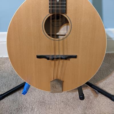 Sawchyn Beaver tail octave mandolin 2020