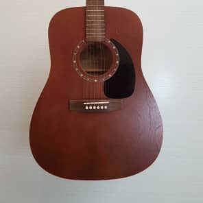 Norman B15 Brown Acoustic Guitar (MINT) with Hardcase for sale