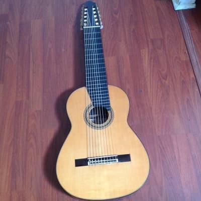 Mitsuru Tamura No 3000 10 string Classical Harp Guitar 1978 Spruce/Brazilian Rosewood RARE ! for sale