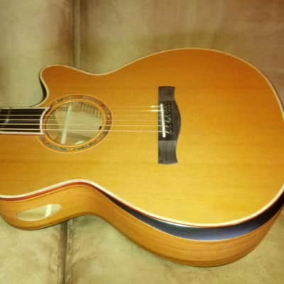 Ayers  Custom Acoustic All Solid woods One of kind for sale