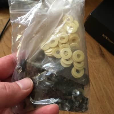 Moog Moog Moogerfooger Rack Mount Kit Screws