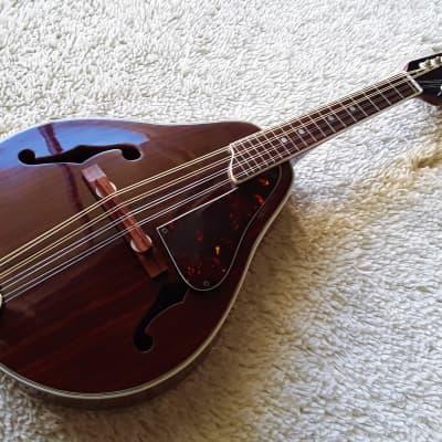 Vintage Kay Mandolin Natural for sale