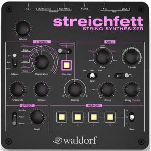 WALDORF Streichfett Sintetizzatore Polifonico String Machine