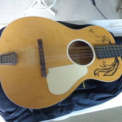 Jackson Guldan  Octave Mandolin / Double Irish Tenor Guitar - Adjustable Neck - 24
