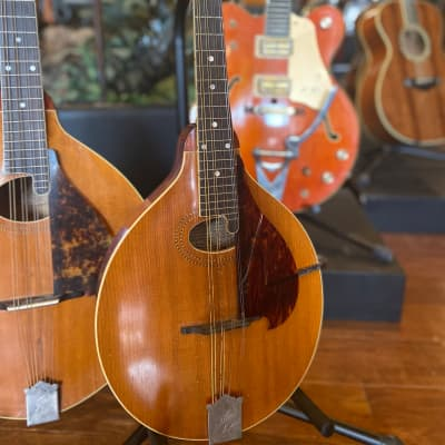 Gibson H-1 Mandola