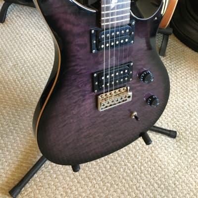 PRS Paul Allender Black / Purple for sale