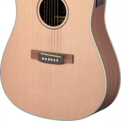 James Neligan Asyla Series Acoustic-Electric Dreadnought, Solid Spruce Top, Lefthanded