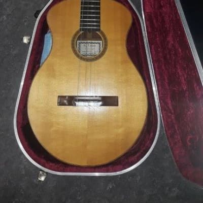 AJ Lucas Luthier Guitar - model: Radial, excellent condition for sale