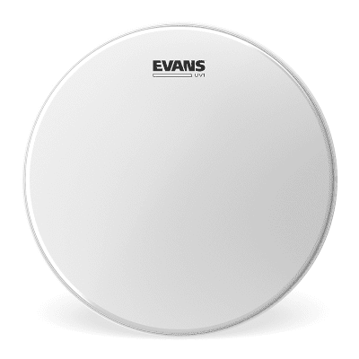 "Evans  B15UV1 UV1 Coated Drum Head - 15"""