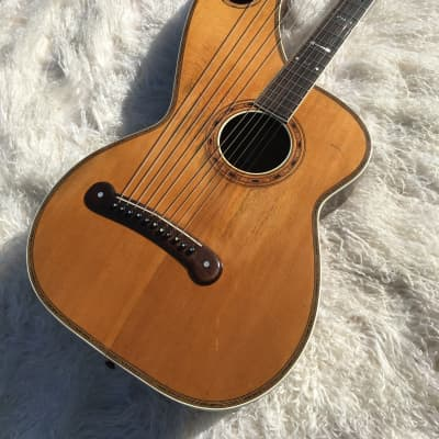 1904-1907 Dyer Harp Guitar Style 7 for sale