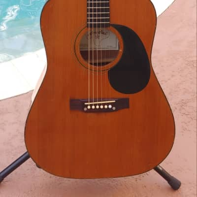 Lone Star Acoustic  MIM for sale