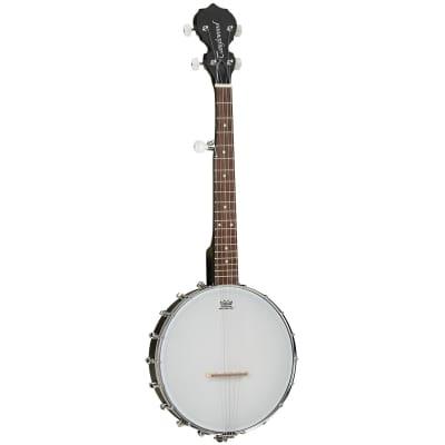 Tanglewood TWBT Traveller Banjo 5 String for sale