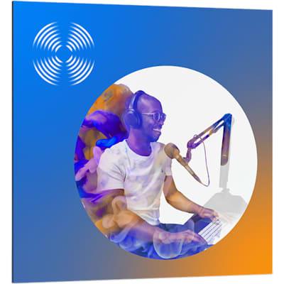 iZotope RX 8 Standard Audio Restoration & Enhancement Software (Download)