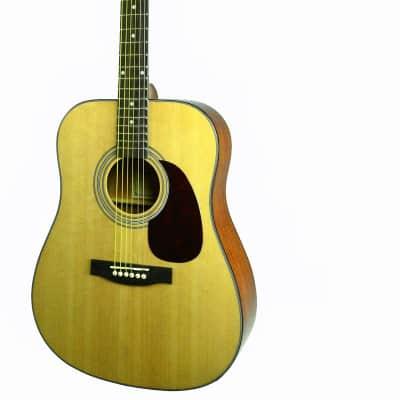 Glen Burton SGA41-NT Conservatory Dreadnought Spruce Top Mahogany Neck 6-String Acoustic Guitar for sale