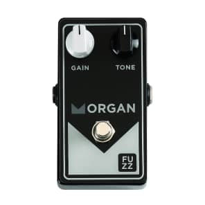 Morgan Amplification Fuzz