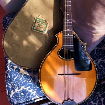 1920's Stromberg-Voisinet Mandolin Venetian Cutaway Brazilian Canted for sale