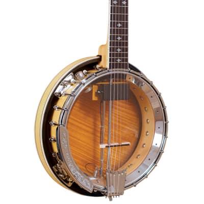 Gold Tone Professional 6-String Banjitar Left-Handed GT-750/L w/case